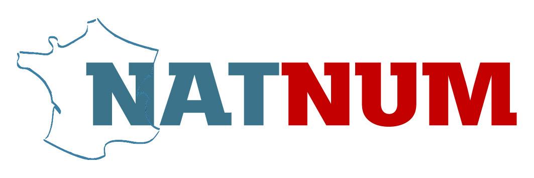 logo projet natnum