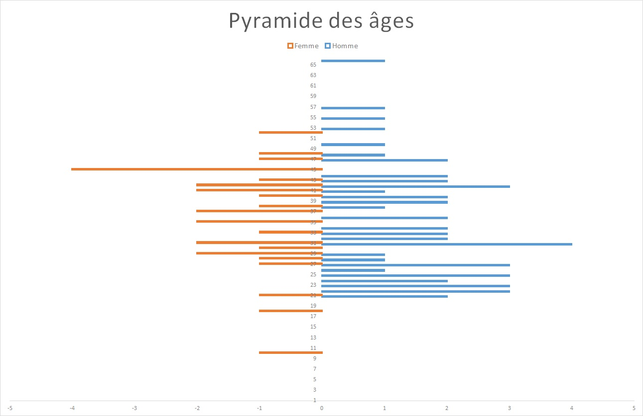 Pyramide des âges de l'échantillon